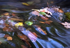 Water, Spirit, Energy