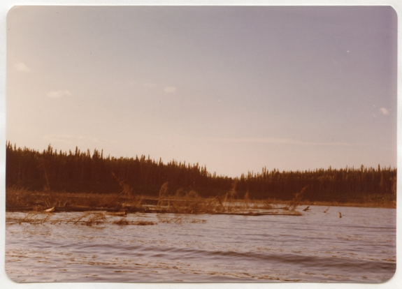 "Debris and navigation hazards in Churchill River Diversion basin (Nelson House area) ""We refuse to believe that we should be singled out to pay the price for society's wasteful energy consumption."" – Northern Flood Committee brief, 1975"